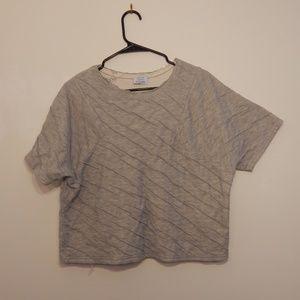 Zara Gray Distressed Crop Top Sweatshirt M